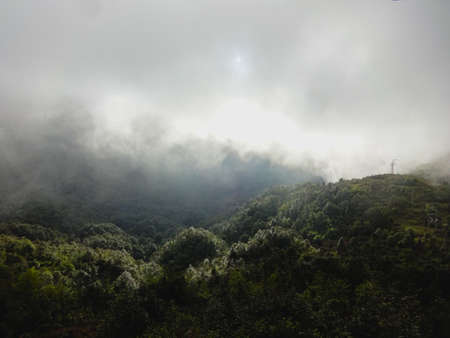 Fog rolling over the thick forest of Lung cu, Vietnam during the winter season