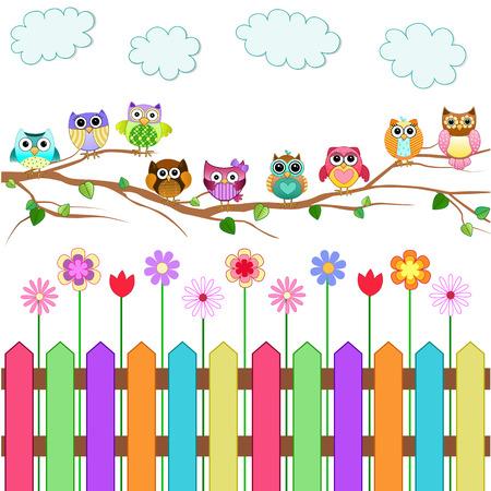 lechuzas: Búhos lindos en un Vector Branch