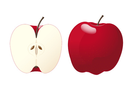 half of apple: Vector of an whole apple and a half apple