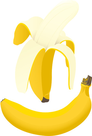 Vector of a pealed banana and an intact banana