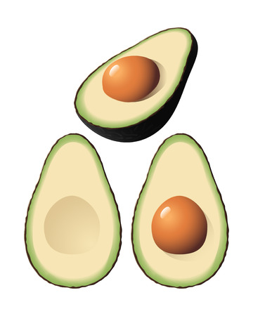 An isolated avocado and halves Stock Vector - 7529853