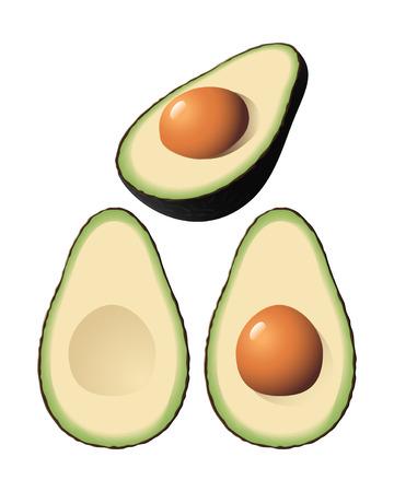 An isolated avocado and halves Stock Vector - 7529853