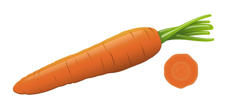 An isolated carrot and a slice