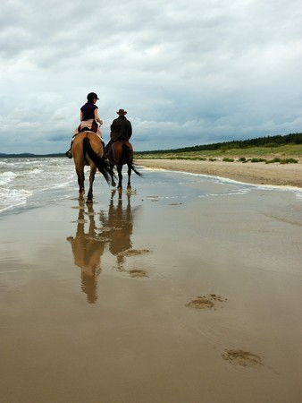 Horse riding on the sandy beach, two cowboys, early morning