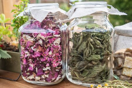 Dried herbs: mint leaves and rose petals in glass jars on wooden table, with green background.