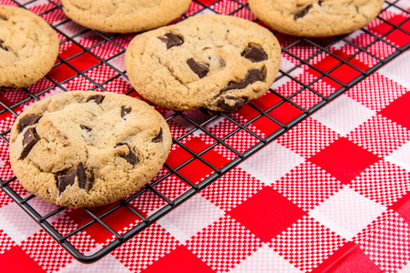 chocolate treats: Freshly Baked Chocolate Chip Cookies out of the oven - cookies on cooling rack on white and red checkered table cloth background