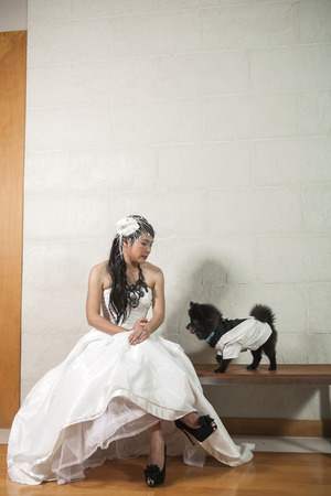 Portrait of a happy bride with a small dog photo