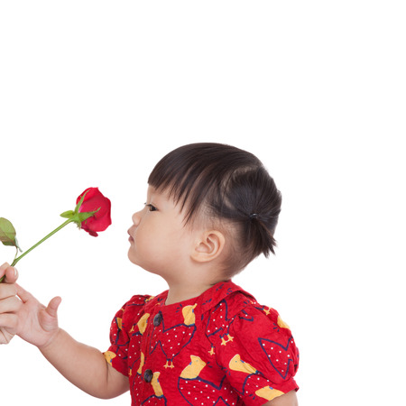 Cute girl with smelling a flower of beautiful red roses. Beautiful mixed asian  caucasian model. Isolated white background.