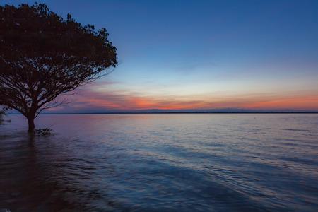 Tramonto con la riflessione dell'albero in un lago alla diga di Ubonrat, città di Khon Khan, Tailandia. Archivio Fotografico - 92523140