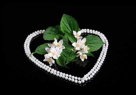 Beautiful Fresh Jasmine Flower and Reflection over Black with Heart of Pearl Stock Photo - 11576284