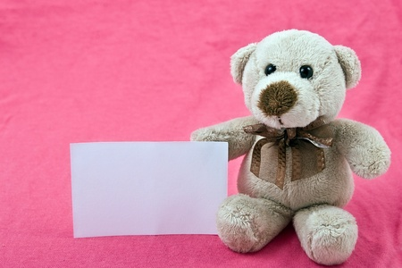single teddy bear with white notice sitting on pink background