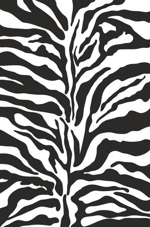 cebra: Impresión Zebra patrón de fondo