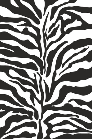 Zebra print background pattern Vector