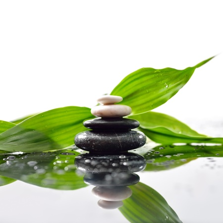 Green leaves over zen stones pyramid on waterdrops surface Stock Photo