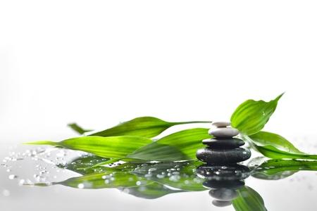 achtergrond van een spa met stenen, en een takje van groene bamboe