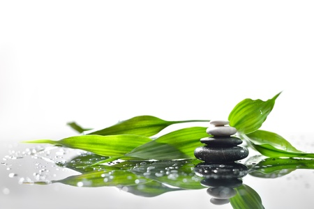 background of a spa with stones, and a sprig of green bamboo Stock Photo
