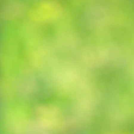 Natural blurred background full of green color, copy space