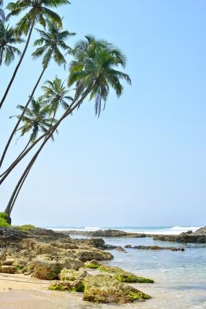 beach, tropical sea and stones