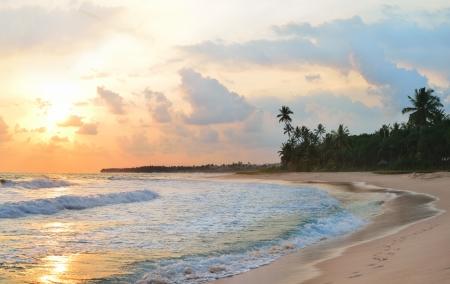 sunset on the beach of Sri Lanka