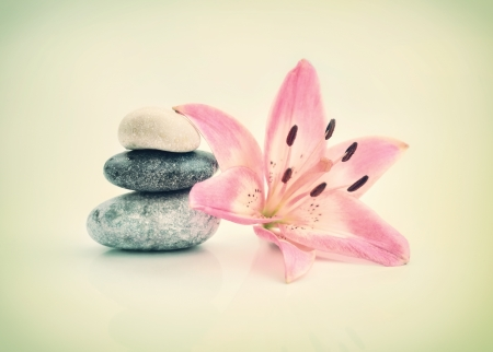 romantic background of a spa with stones and lily flower in pastel tones