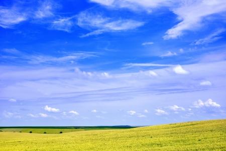 Beautiful summer landscape scenic view
