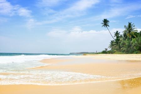 Tropical beach with palm trees, Sri Lanka Stock Photo