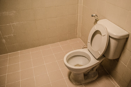 Flush toilet  Stock Photo - 25787412
