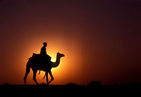 A camel rider captured against the halo of setting sun