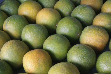 slantwise: Ordinatamente stalked dolci frutti di limone in una stalla