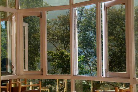 Vision claire de la nature � travers les fen�tres en verre transparent