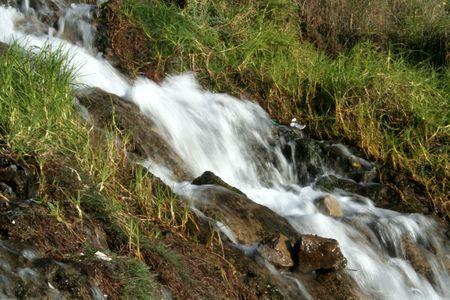 immobile: Vista borrosa de agua que corren por la ladera de la monta�a Foto de archivo