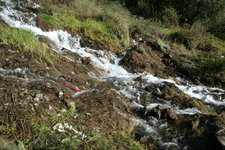 immobile: Arroyo de monta�a, Nainital, Hill estaci�n, Uttarakhand Estado, la India, Asia