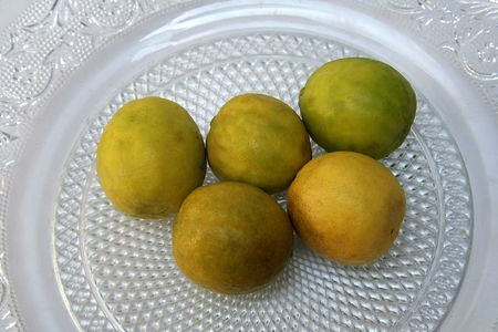 acidic: Lemon is a pale yellow, thick-skinned citrus fruit with sour, acidic juice containing vitamin C