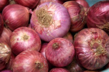 allium cepa: Onions (Allium cepa) are swollen bulbs with many concentric layers
