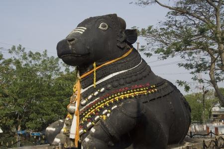 nandi: Big Stone Bull at Chamundi Hills, Mysore, Karnanata, India, Asia