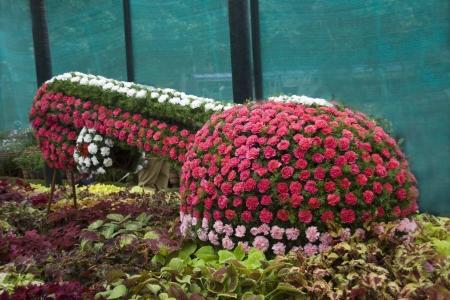 flower show: Visualizzazione del fiore tempestato indiana strumento musicale Veena a Flower Show, Lalbagh Botanical Garden, Bangalore, Karnataka State, India, Asia