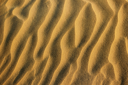 rajasthan: Closeup of wavy sand pattern at Sam Sand Dunes near Jaisalmer Rajasthan India Asia