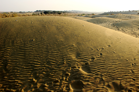 Footprints and wavy pattern at Sam Sand Dunes at sunset, Jaisalmer, Rajasthan, India, Asia