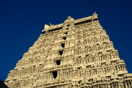 Details of Arunachaleshwara Temple Tower in Tiruvannamali, Tamil Nadu, India, Asia
