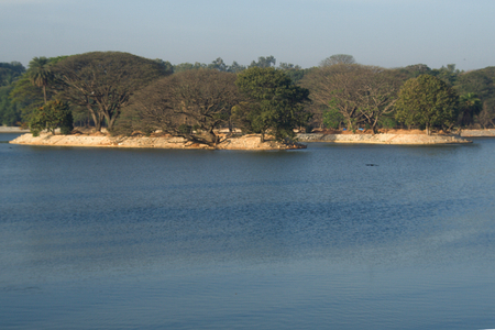 Lush green trees interposed between vast blue lake and sky at Lalbagh in Bengaluru, Karnataka, India, Asia