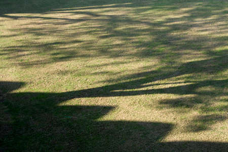 Pattern of shadow and light created by morning sunlight falling on neat, plain ground