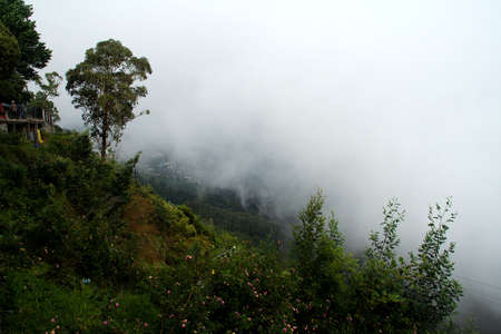 Landscape with mist in the background at Coaker's Walk in Kodaikanal, Tamil Nadu, India, Asia