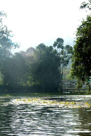 View of lake, water and landscape at Kodaikanal in Tamil Nadu, India, Asia