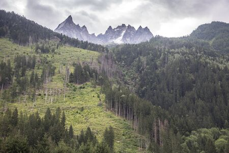 Green forest, hight mountain peaks in Chamonix, France. Scenic image of hiking concept. Perfect moment in alpine highlands.