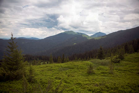 Landscape view of summer Alpine meadows of the high mountains Stock Photo