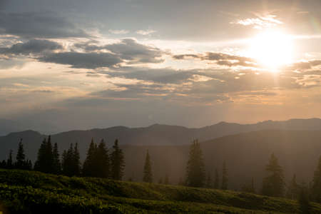 Sunset in the mountains. The evening rays break through the spruce trees. Carpathians, Marmaroshchyna, Maramures, Ukraine