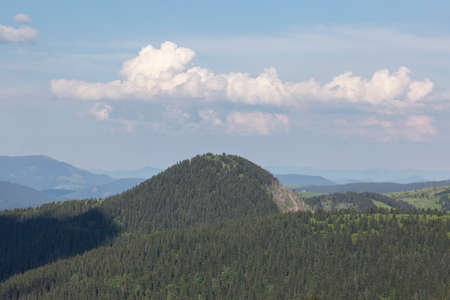 The round top of the mountain is covered with spruce forest. Fabulous woodland country. Mount Stig, Carpathians Stock Photo