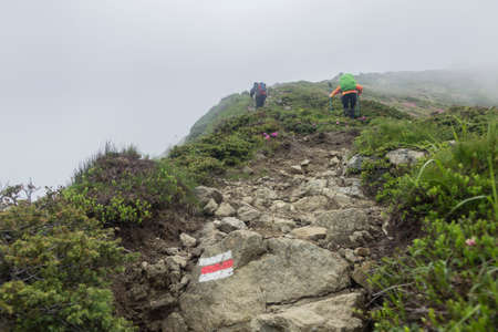Tourist route mark on stone, painted in white and red guiding the way to the hiking mountain. Tourist hikers with backpack