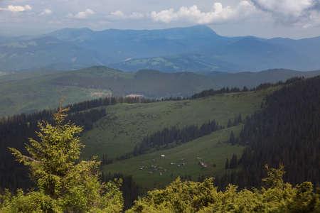 Summer panoramic landscapes of the mountain meadow near Popivan (Pip Ivan) mountain peak. Carpathians, Ukraine