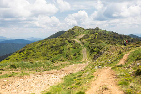 Tourists hike in the mountains. The road rises between hills, trees and bushes. Travel outdoor concept view of the Carpathians, Marmarosh Mountains
